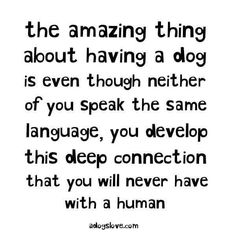 Such a true meaning of the bond we have with our furbabies! ❤
