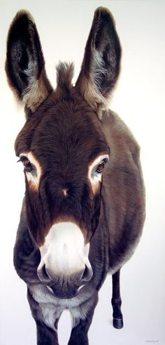 So cute! I love donkeys! Best part of this though, is that it is a PAINTING!