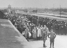 Jews lined up for selection on the ramp at Auschwitz-Birkenau. Poland, May 1, 1944. Only a few 100 would be selected to slave labor or for medical experiments. From May 15 to July 9, 1944, Hungarian gendarmerie officials, under the guidance of German SS officials, deported around 440,000 Jews from Hungary.