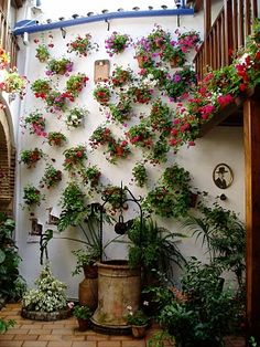 """Spanish typical pots hanged in the wall are a true tradition in Cordoba and its """"patios"""""""