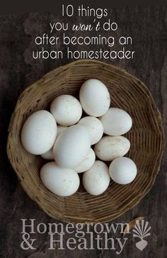Urban homesteading o