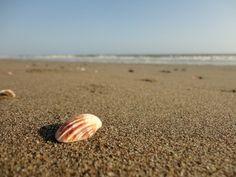 Inspiração fotográfica: praia