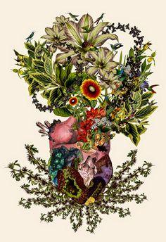 Travis Bedel atualizou seu portfólio e vem com tudo! Também conhecido como Bedelgeuse, suas colagens científicas misturam anatomia e botânica.