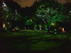 #DallasLandscapeLighting installs #tree #lighting in a way that creates a…