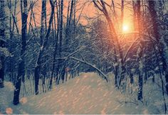 winter pictures tumblr - Google Search