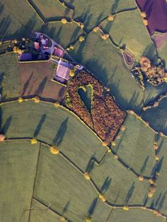 A heart-shaped meadow, created by a farmer as a tribute to his late wife, can be seen from the air near Wickwar, South Gloucestershire. The point of the heart points towards Wotton Hill, where his wife was born. Gloucester, Heart In Nature, Everlasting Love, Photo Tree, Plantation, In The Tree, Oak Tree, Belle Photo, Trees To Plant