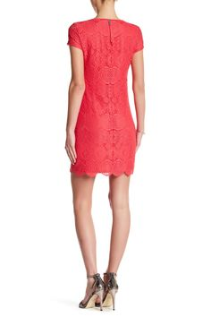 Short Sleeve Lace Shift Dress by Laundry By Shelli Segal on @nordstrom_rack