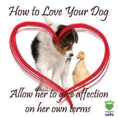 Love your dog by allowing her to give affection on her terms. If kids have to go after the dog in order to interact, then the dog is saying no.  http://doggonesafe.com/valentines_tips
