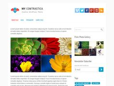 My Contrastica WordPress Theme
