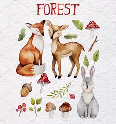 Forest watercolor set by Maria Sem Watercolors on @creativemarket
