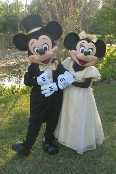 Mickey and Minnie Wedding!