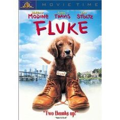 the cutest and most ridiculous dog movie i've ever seen. no matter how far fetched... you're still in tears every time. Damn it, puppies!!!
