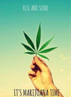 Rise and Shine it's Marijuana Time  ( marihuana cannabis marijuana )…