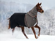 Even though many horses will become acclimated to the cold, in a climate where wind, rain or snow is prevalent, they may welcome the added protection, oftentimes starting with that first chilly, fall night.