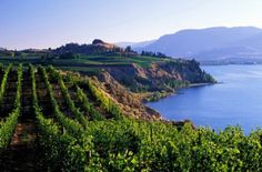 Okanagan Valley ......  British Columbia ... Canada