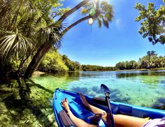 ReserveAmerica and Florida State Parks 2017 Summer Photo Contest Winners.  Second Place: Palm Tree Alcove at Rainbow Springs State Park by Caroline Peet  #FLStateParks #Florida #Springs #PalmTrees #Vacation #Kayak #Kayaking #Outdoors #Adventure #Travel