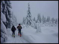 outdoor.org.pl | [Beskid Żywiecki] – Rysianka i Lipowska – szybka tura na skiturach