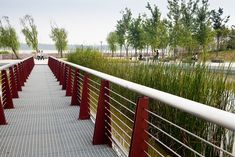 Bengbu-Longzi-Lake-Bridge-Park-by-AECOM-05 « Landscape Architecture Works | Landezine