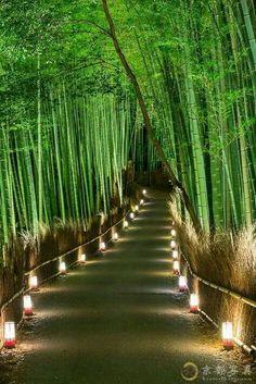 Backyard Landscaping Discover 15 Truly Astounding Places To Visit In Japan - Travel Den Arashiyama Bamboo Forest Japan - 15 Truly Astounding Places To Visit In Japan Beautiful Places In Japan, Beautiful Places To Visit, Cool Places To Visit, Places To Go, Amazing Places, Japan Landscape, Landscape Design, Garden Design, Sky Landscape