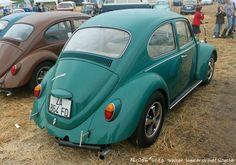 Vw Beetles, Bugs, Volkswagen, Explore, Vehicles, Sports, Photos, Beetles, Hs Sports