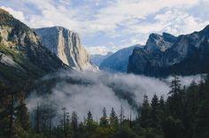 This HD wallpaper is about green trees between mountains during daytime, forest, mist, clouds, Original wallpaper dimensions is file size is Face Images, Face Pictures, Hd Images, Next Wallpaper, Forest View, Forest Mountain, National Parks Usa, Yosemite Valley, Ms Gs