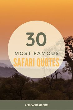 30 #Safari #Quotes to #Inspire You About #Africa. Looking for a new and exciting #adventure? These 30 famous quotes and safari #sayings will literally make you fall in #love with Africa!