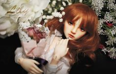 NEW Grace Harmony Lily Released!