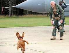 Flight Lt. Steve Morris, who returned to RAF Marham, Norfolk, England, following a seven-month deployment, greets his dog Jezabelle