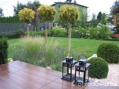 Ogród Tosi - strona 314 - Forum ogrodnicze - Ogrodowisko