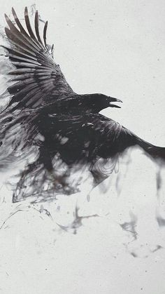 This incorporated with the trash polka style would be badass Raabe Tattoo, Cool Tattoos, Tatoos, 16 Tattoo, Smoke Tattoo, Raven Bird, Crow Bird, Yennefer Of Vengerberg, Crows Ravens