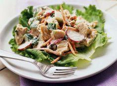 Feeding chicken salad for lunch