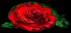 Rosa   craig-tracy-body-art-ilusions-8