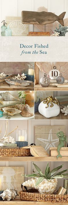 Bring home the beach with Birch Lane's selection of ocean-inspired finds for every room. Sea glass greens and navy blues help set the tone, while driftwood and seashell materials offer texture picked straight from the shore. Get these looks and more at http://Birchlane.com and enjoy free shipping on all orders $49 and over