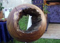Ein besonderes Stück Holz - ein echter Hingucker