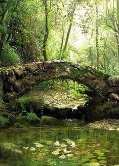 abandoned bridge, ,maybe it's not abandoned, just waiting for someone to enjoy...