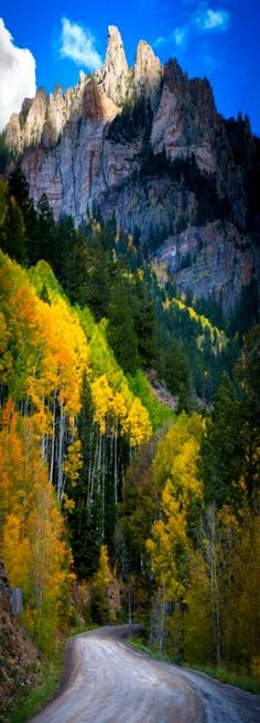 Silver Mountain, San Juan Mountains, Ouray, Colorado; photo by Inge Johnson