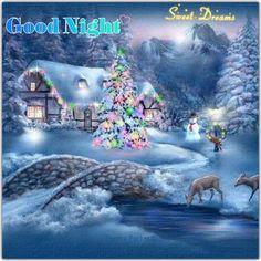 Good night sister and all,have a peaceful sleep God bless xxx❤❤❤✨✨✨🌙