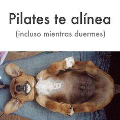 "@InspirahPilates's photo: ""#Pilates te alínea (aún mientras duermes) | www.inspirahpilates.com | @Candia Raquel |"""