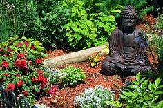 Meditation Garden                                                                                                                                                                                 More