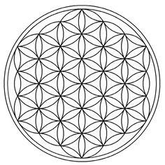 laflordelavida-hexagono1                                                                                                                                                                                 Más
