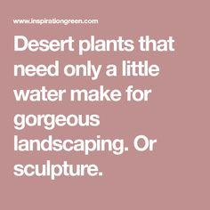 Desert plants that need only a little water make for gorgeous landscaping. Or sculpture.