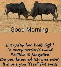 Morning Bible Quotes, Good Morning Inspirational Quotes, Morning Greetings Quotes, Good Morning Msg, Good Morning Messages, Morning Blessings, Morning Prayers, Morning Pictures, Morning Images