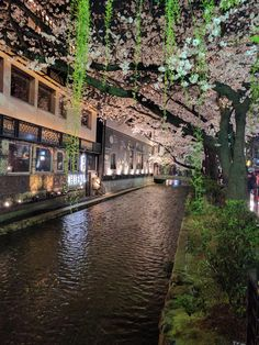 Kyoto at night | imgur