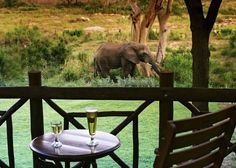 The Protea Hotel Kruger Gate offers guests luxurious accommodation in the African bush. This hotel near Kruger is located at the Paul Kruger Gate of the Kruger National Park Kruger National Park, National Parks, Best Holiday Packages, Visit South Africa, Lodge Style, Park Hotel, Africa Travel, Gate, Places To Go