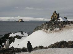 I want to visit Antarctica!