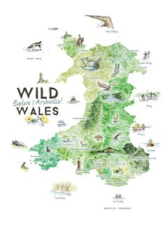 Travel and Trip infographic Travel infographic - Wild Wales: Illustrated Map Benjamin Mounsey Infographic Description Travel and Trip infographic Wild Travel Maps, Travel Posters, Travel Destinations, Wales Map, Map Crafts, Visit Wales, Travel Illustration, Herbs Illustration, Map Design