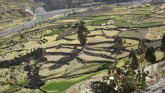Vallée de Colca, Pérou  Photo @ Béatrice Ruspini