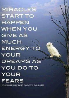 Don't be afraid- Dream. www.dougdoeslife.com