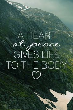 """""""A heart at peace gives life to the body"""""""