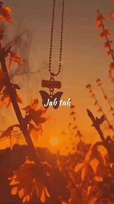 Beautiful Words Of Love, Beautiful Nature Scenes, Beautiful Songs, Film Aesthetic, Aesthetic Movies, Aesthetic Videos, Good Vibe Songs, Cute Love Songs, Shotting Photo